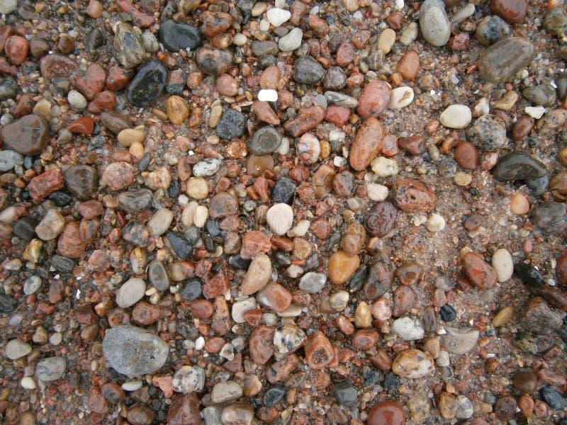 Baltic sea coast`s stones royalty free stock image