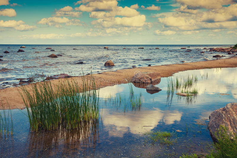 Baltic sea coast. Sand spit separates the river meets the sea stock photography