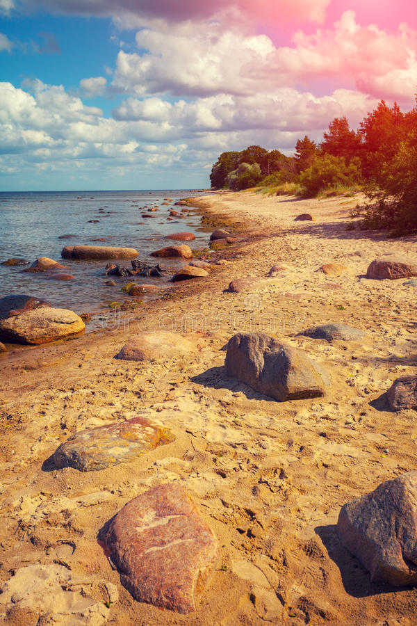Baltic sea coast. Stone boulders on the beach royalty free stock photo