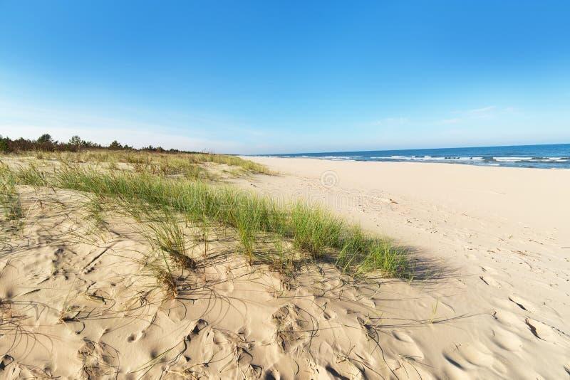 Baltic sea sand dunes stock image