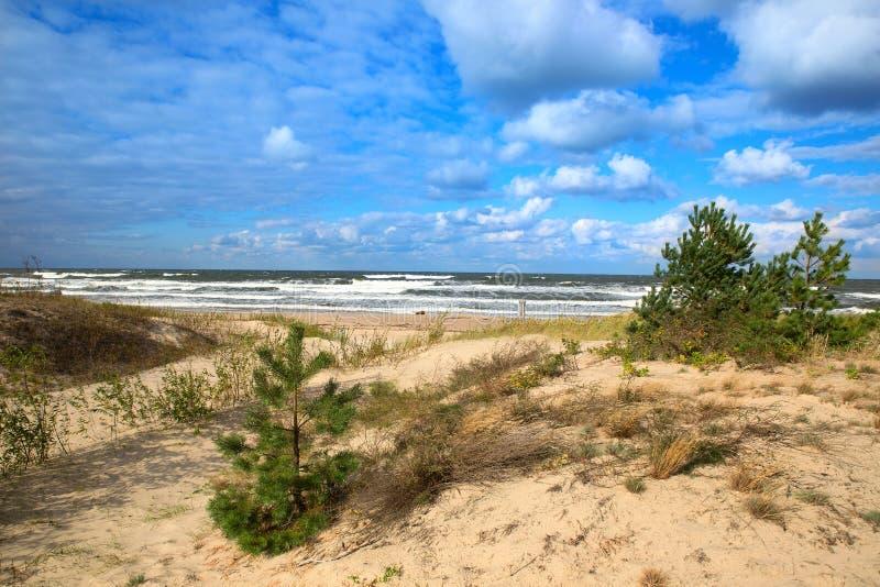 Baltic sea sand dunes stock photography