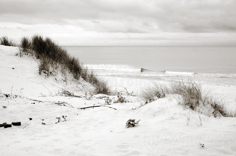 Download Baltic Sea Shore, Dunes, Sand Beach, Blue Sky Stock Image - Image: 26691229