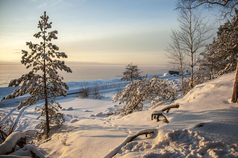 Baltic sea shore in winter royalty free stock photography
