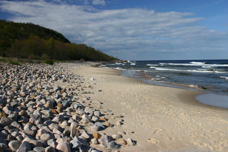 Download Baltic Sea, Stenshuvud, Sweden Stock Image - Image: 2365967