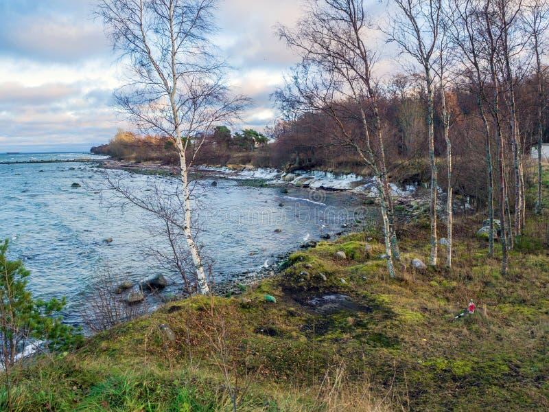 Baltische kustlijn onder een gedeeltelijk bewolkte hemel royalty-vrije stock foto