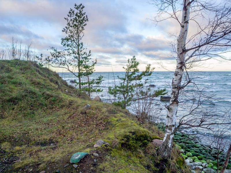 Baltische kustlijn onder een gedeeltelijk bewolkte hemel stock foto