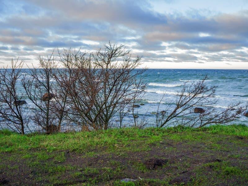 Baltische kustlijn onder een gedeeltelijk bewolkte hemel royalty-vrije stock fotografie