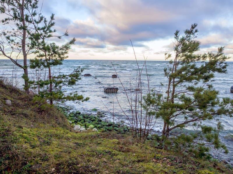 Baltische kustlijn onder een gedeeltelijk bewolkte hemel royalty-vrije stock afbeeldingen