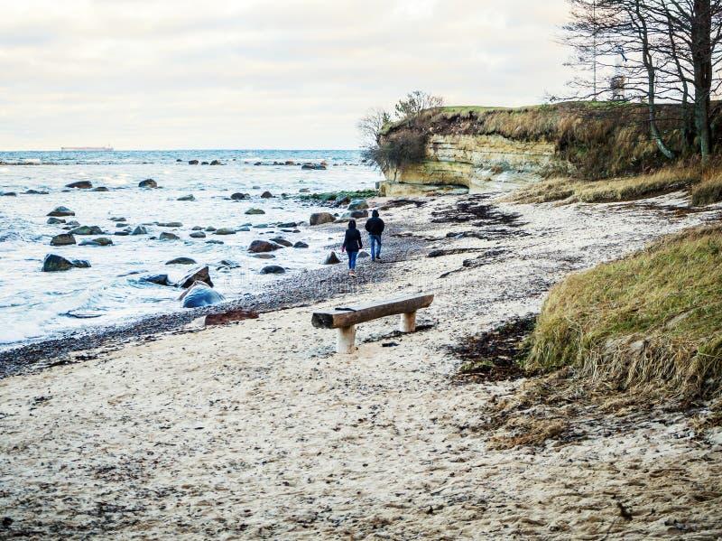 Baltische kustlijn onder een gedeeltelijk bewolkte hemel stock fotografie
