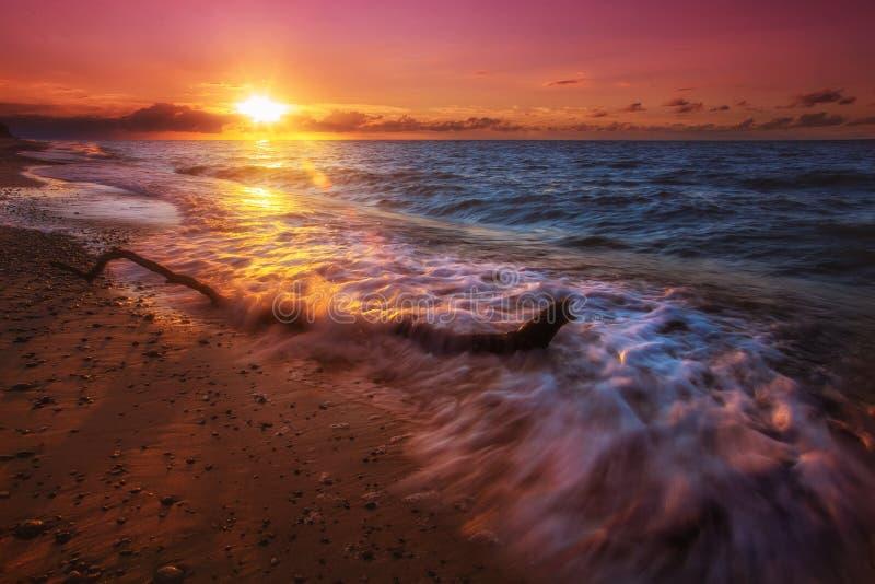 Baltischer Strand stockbild