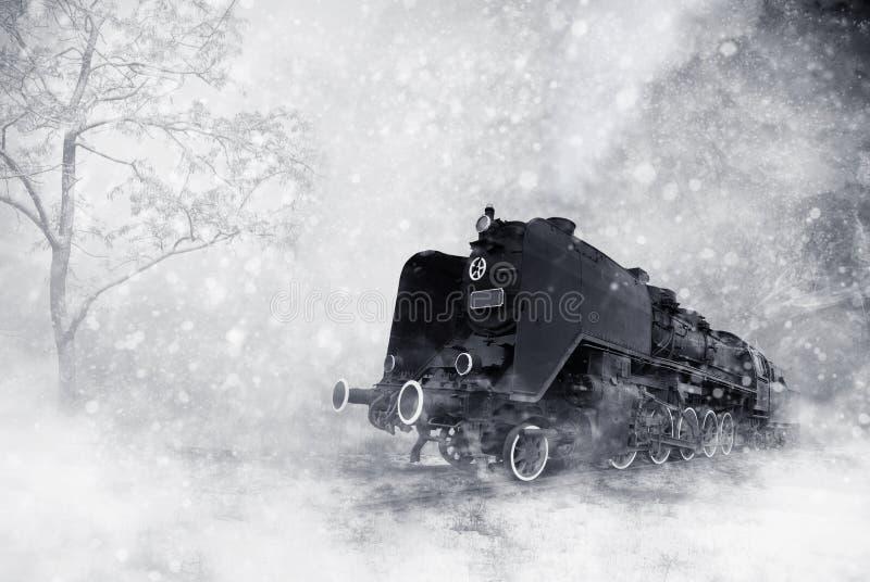 baltisk zelenogradsk för vinter för kajrussia storm