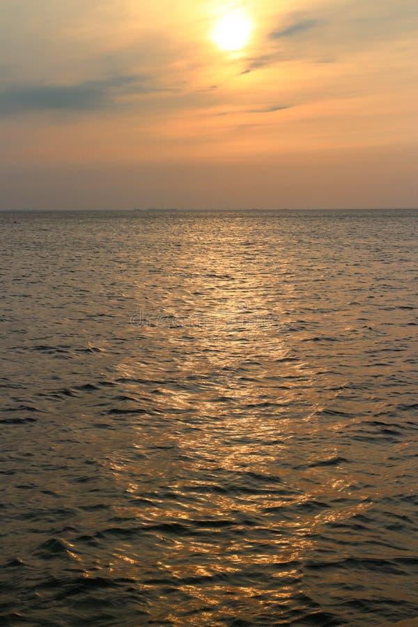 baltiska estonia nära havssomethere tallinn royaltyfria foton