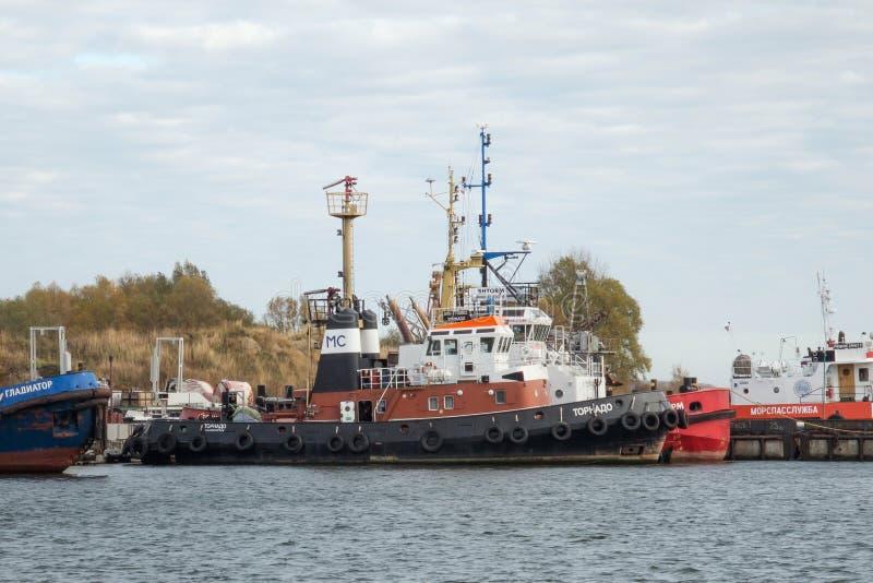 BALTIYSK, RUSSIA - NOVEMBER 04, 2018: Russian port off-shore diesel tugboat Tornado. royalty free stock images
