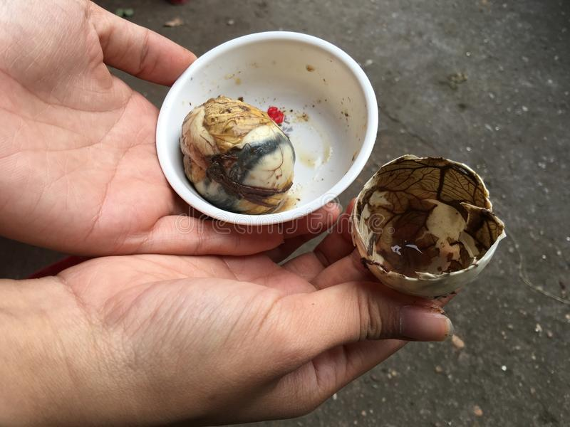 Balut (被施肥的鸭子鸡蛋) 库存图片