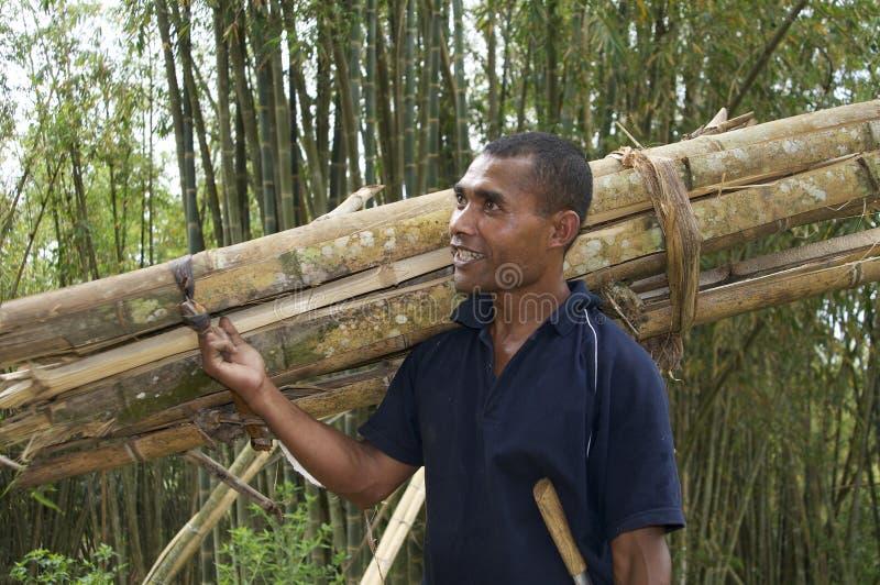 Bambù di trasporto dell'uomo immagini stock