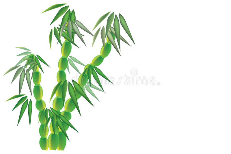 Bambù nano immagine stock
