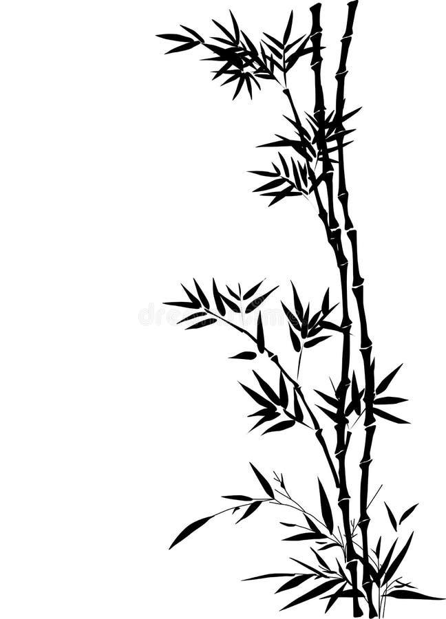 Bambú ilustración del vector
