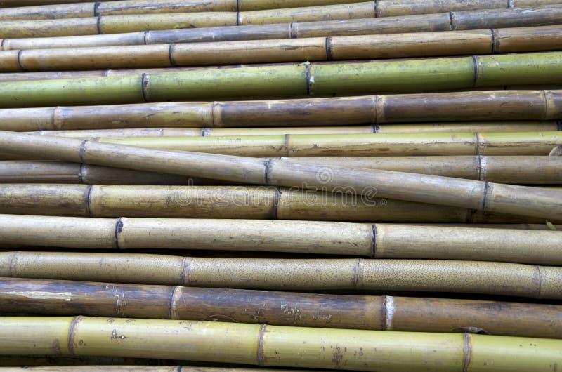 Bambú de la construcción fotos de archivo