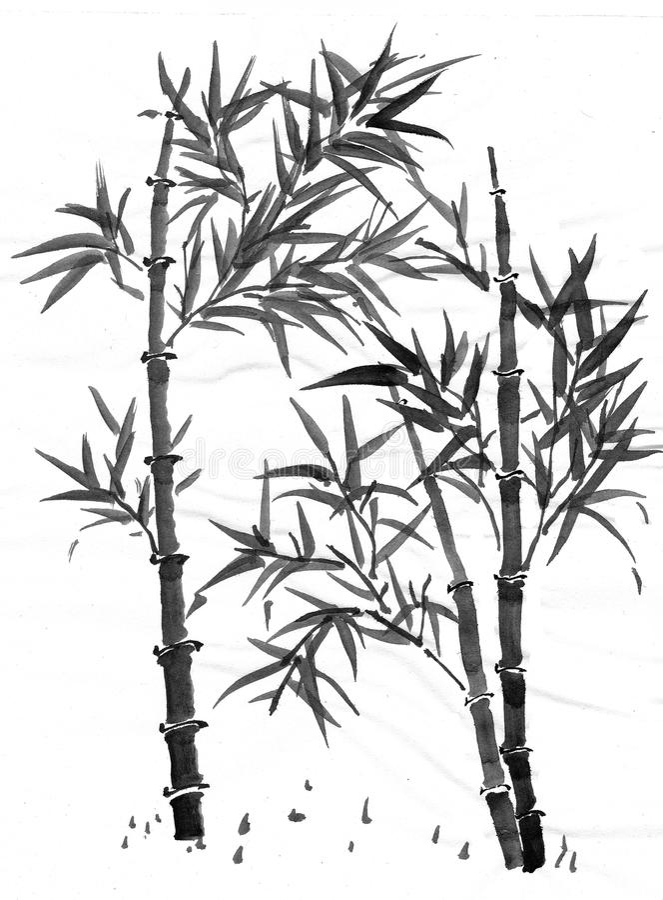 Bambú de Sumi-e fotografía de archivo libre de regalías