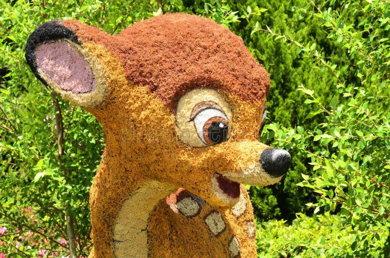 Bambi Profile stockfotografie