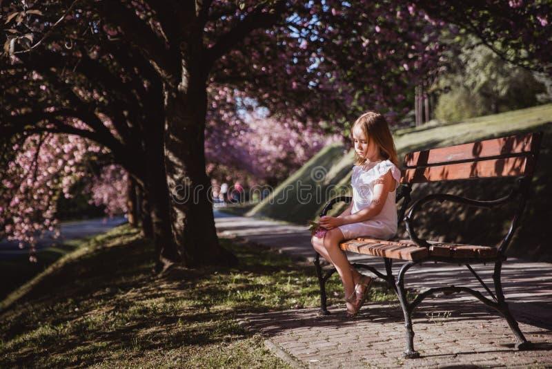 Bambina adorabile in vestito bianco in giardino rosa di fioritura il bello giorno di molla immagini stock
