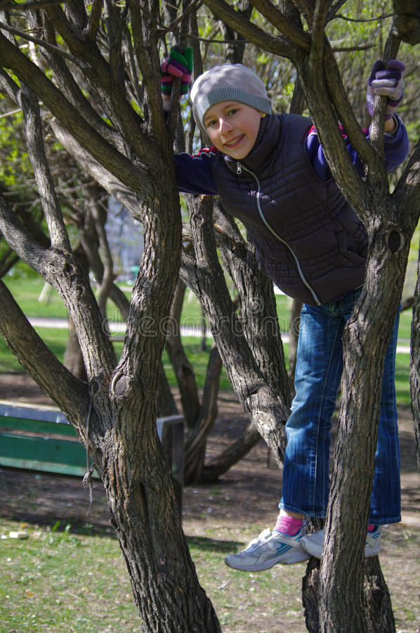 Bambina allegra divertente che scala su un albero nel parco bambini all'aperto vacanza di estate fotografie stock libere da diritti
