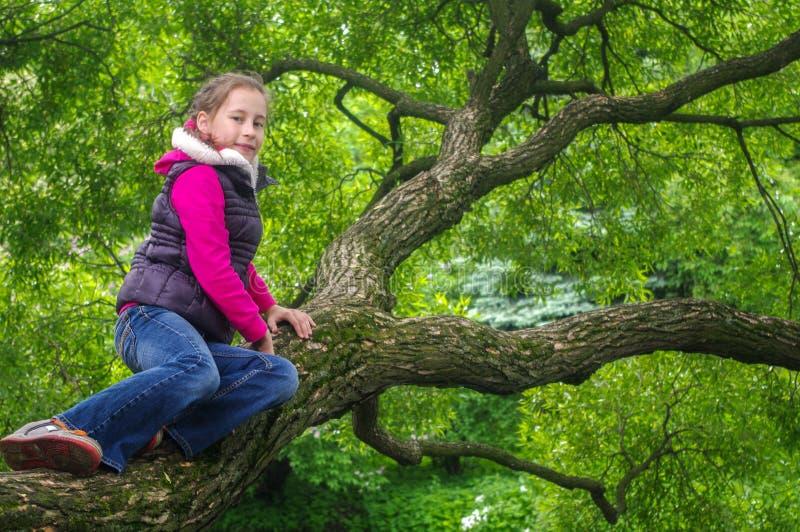 Bambina allegra divertente che scala su un albero nel parco bambini all'aperto vacanza di estate fotografia stock libera da diritti