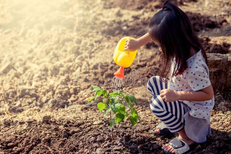 Bambina asiatica che innaffia giovane albero con l'innaffiatoio fotografie stock libere da diritti