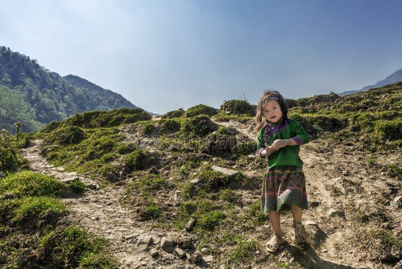 Bambina che appartiene alla comunità tribale di Hmong sulla passeggiata alla sua casa dal suo campo, Sapa Vietnam fotografia stock