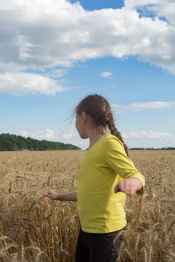Bambina che gioca in un grano Giorno soleggiato delicato immagini stock