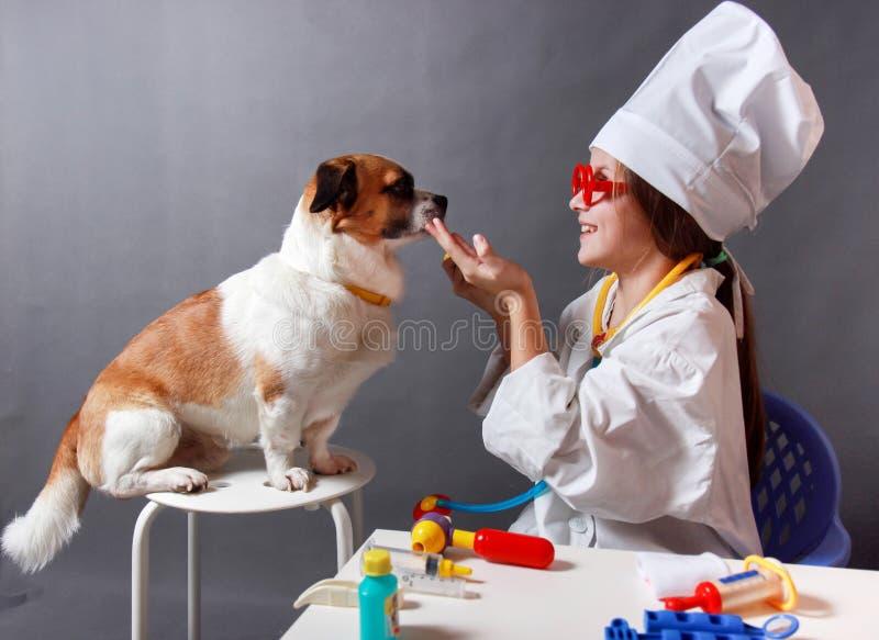 Bambina che gioca veterinario con il cane immagini stock libere da diritti