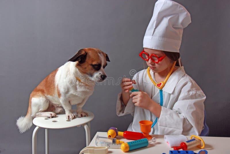 Bambina che gioca veterinario con il cane fotografia stock libera da diritti