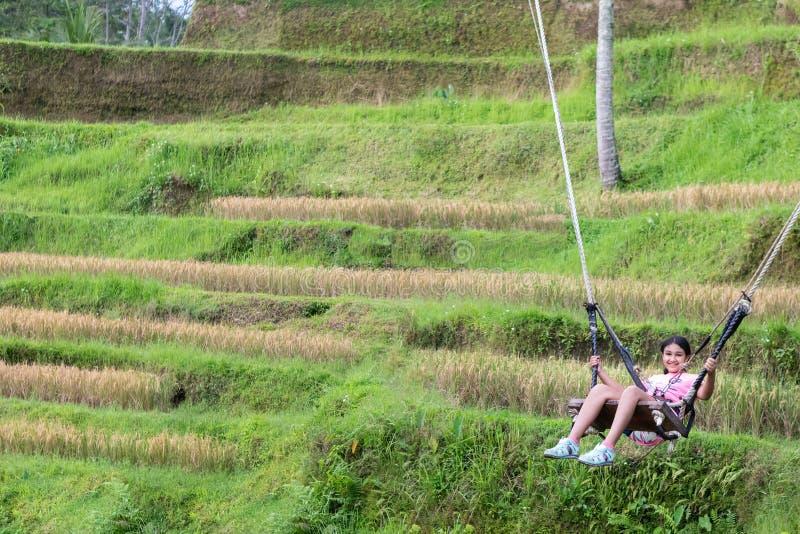 Bambina che oscilla sopra le risaie di Tegalalang in Ubud, Bali immagini stock libere da diritti