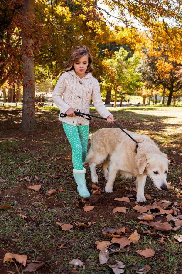 Bambina che prende per una passeggiata il suo cane fotografie stock