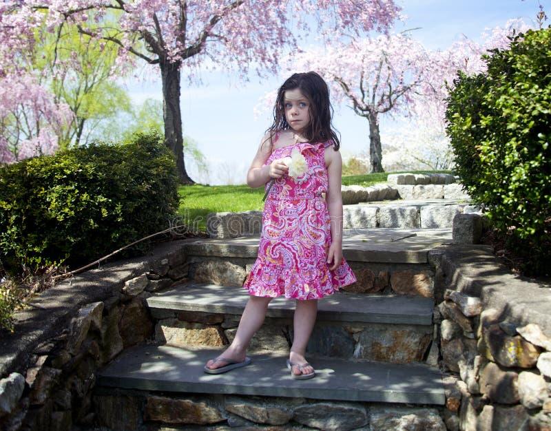Bambina che tiene un fiore fotografie stock libere da diritti