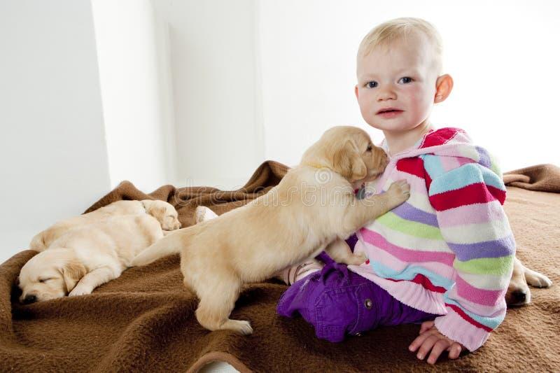 Bambina con i cuccioli fotografie stock libere da diritti