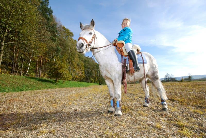 Bambina con il cavallino immagine stock