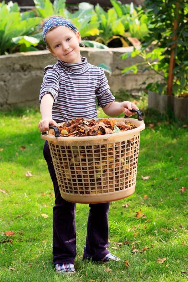Bambina con il grande canestro di plastica pieno delle foglie fotografie stock