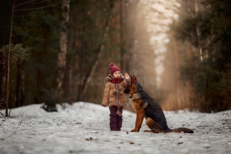 Bambina con il sesto cucciolo di mesi del pastore tedesco alla molla in anticipo immagini stock