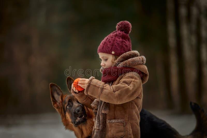 Bambina con il sesto cucciolo di mesi del pastore tedesco alla molla in anticipo immagini stock libere da diritti
