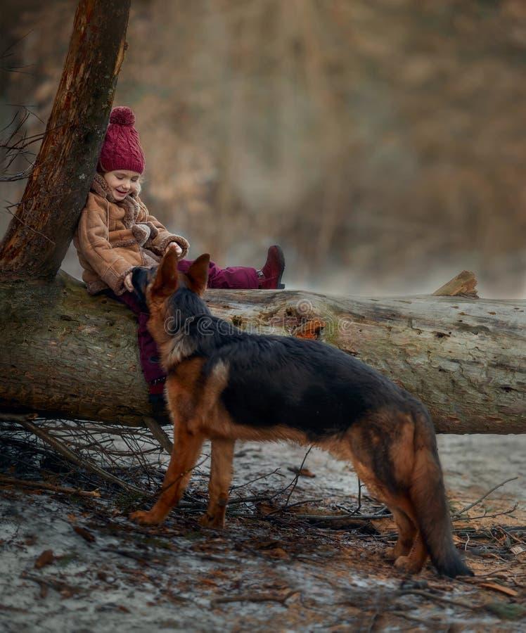 Bambina con il sesto cucciolo di mesi del pastore tedesco alla molla in anticipo immagine stock