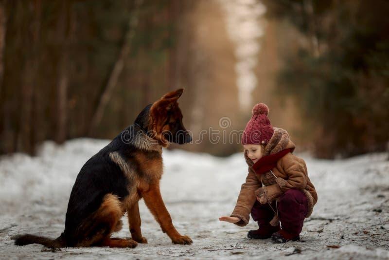 Bambina con il sesto cucciolo di mesi del pastore tedesco alla molla in anticipo fotografie stock