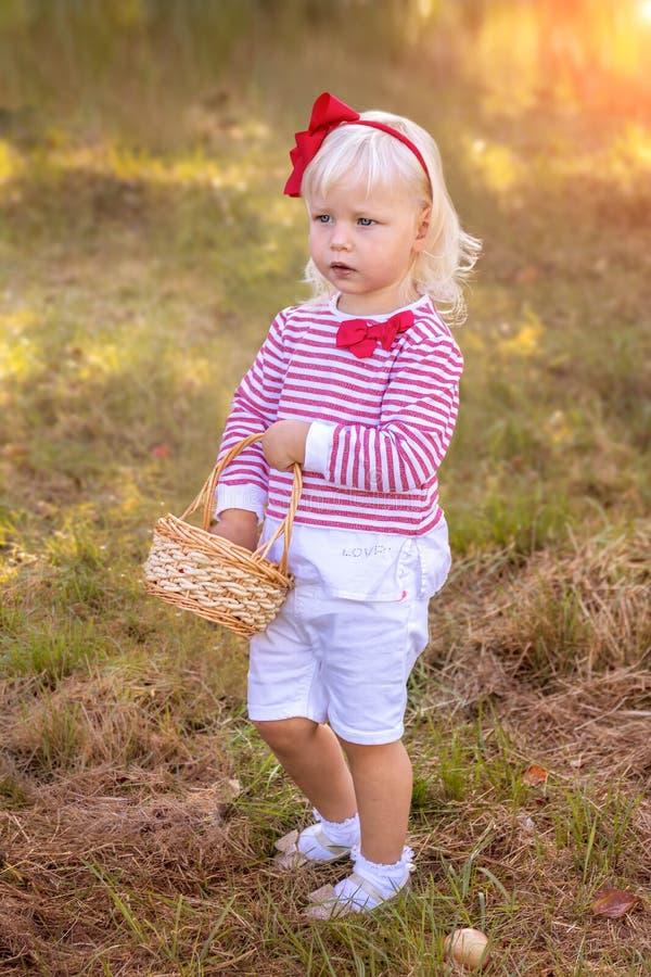 Bambina con le merci nel carrello delle mele in frutteto immagini stock libere da diritti