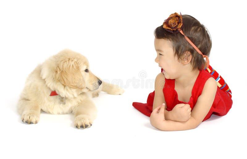 Bambina con un golden retriever del cucciolo isolata immagine stock libera da diritti