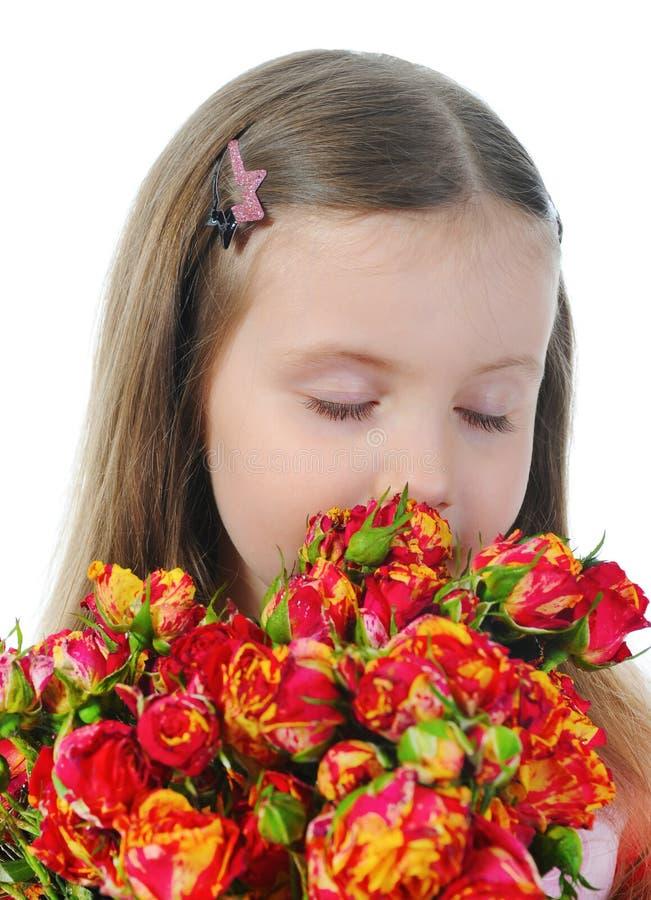Bambina con una rosa. fotografia stock libera da diritti
