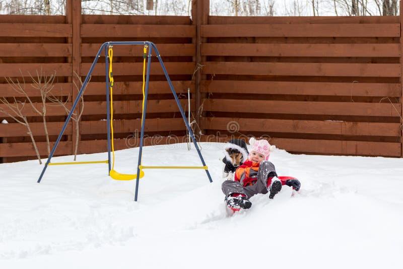 Bambina e cane che sledding nella neve fotografie stock libere da diritti