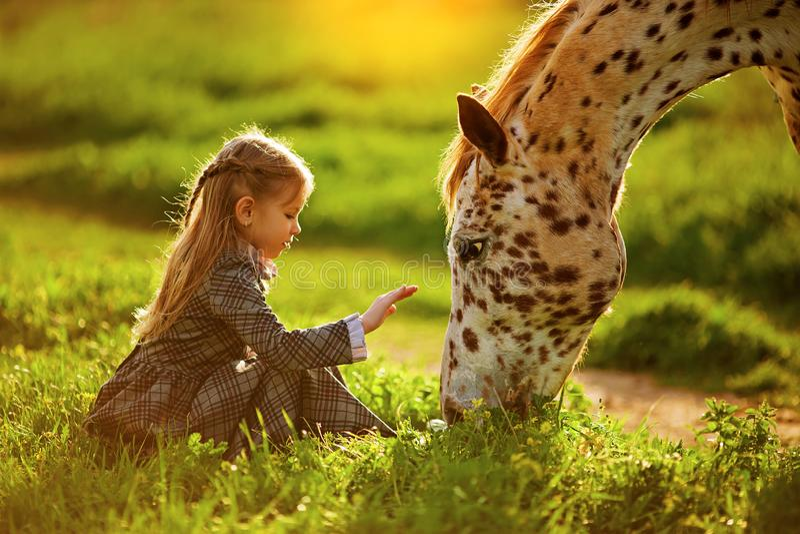 Bambina e cavallo fotografia stock