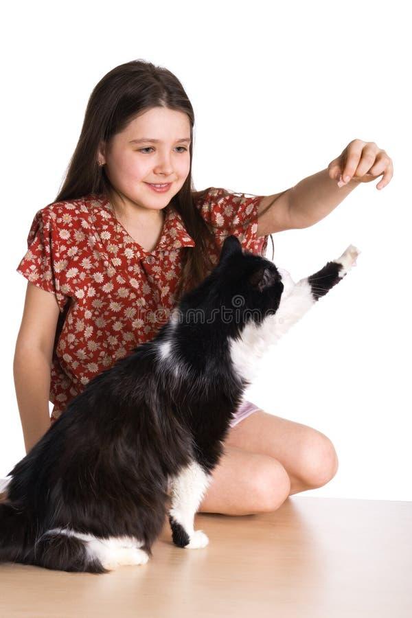 Bambina e gatto lanuginoso immagini stock libere da diritti