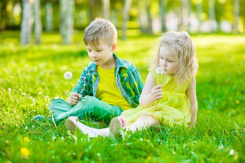 Bambina e ragazzo che si siedono insieme sull'erba verde fotografia stock libera da diritti