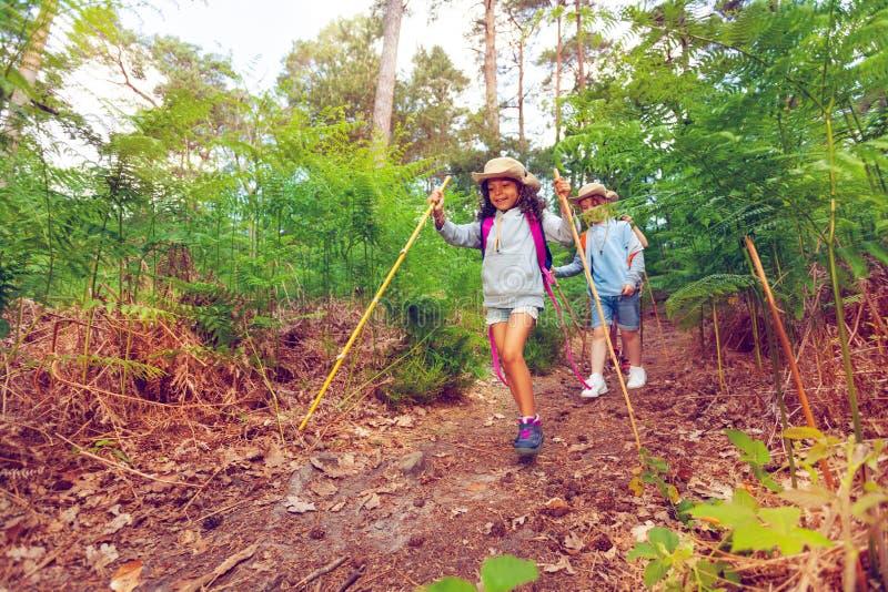 Bambina e ragazzo nella foresta sull'escursione immagine stock